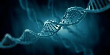 「科学を創造する人材育成事業」への製品の提供